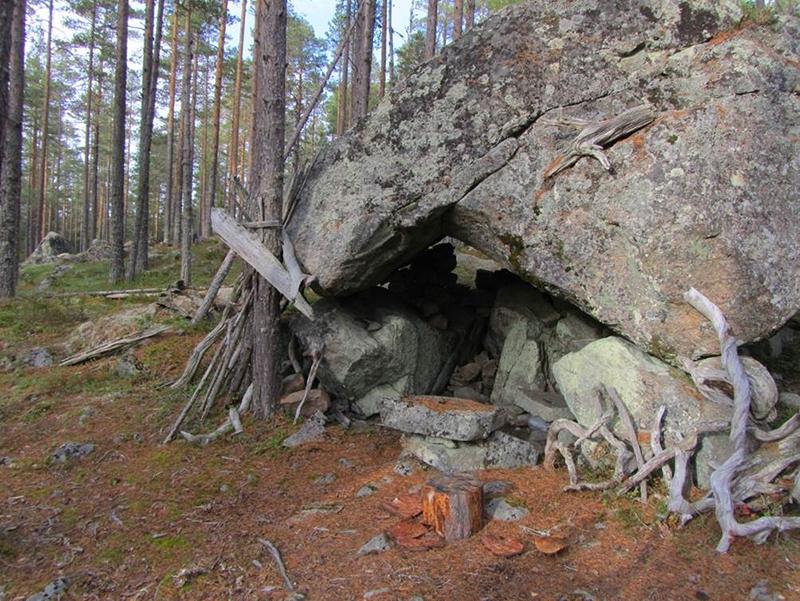 stenparti med pinnar och träd