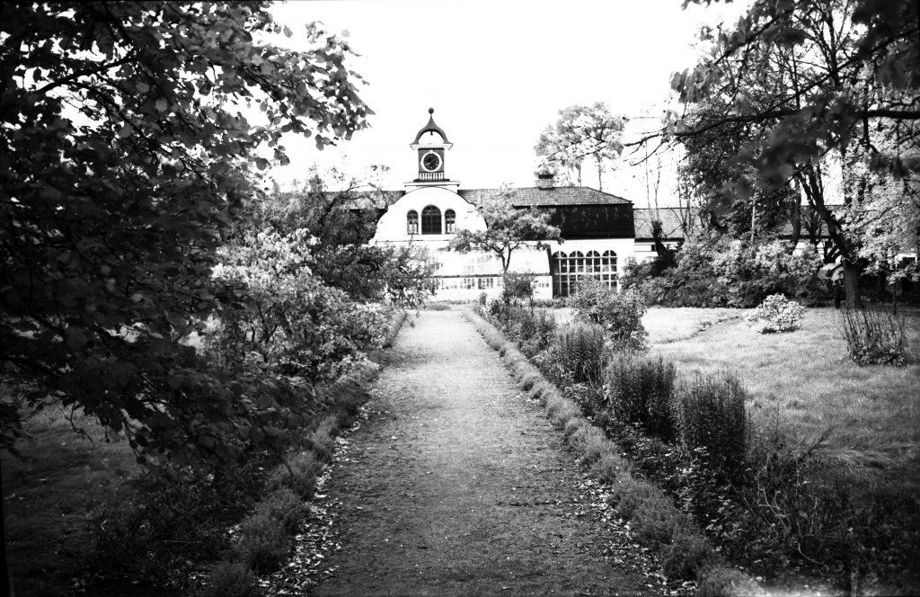 svartvit foto av trädgård och orangeri