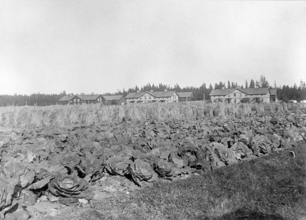 svartvit foto av kålodning och arbetarbostäder år 1900