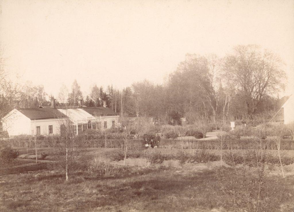 svartvitt foto av växthusträdgård