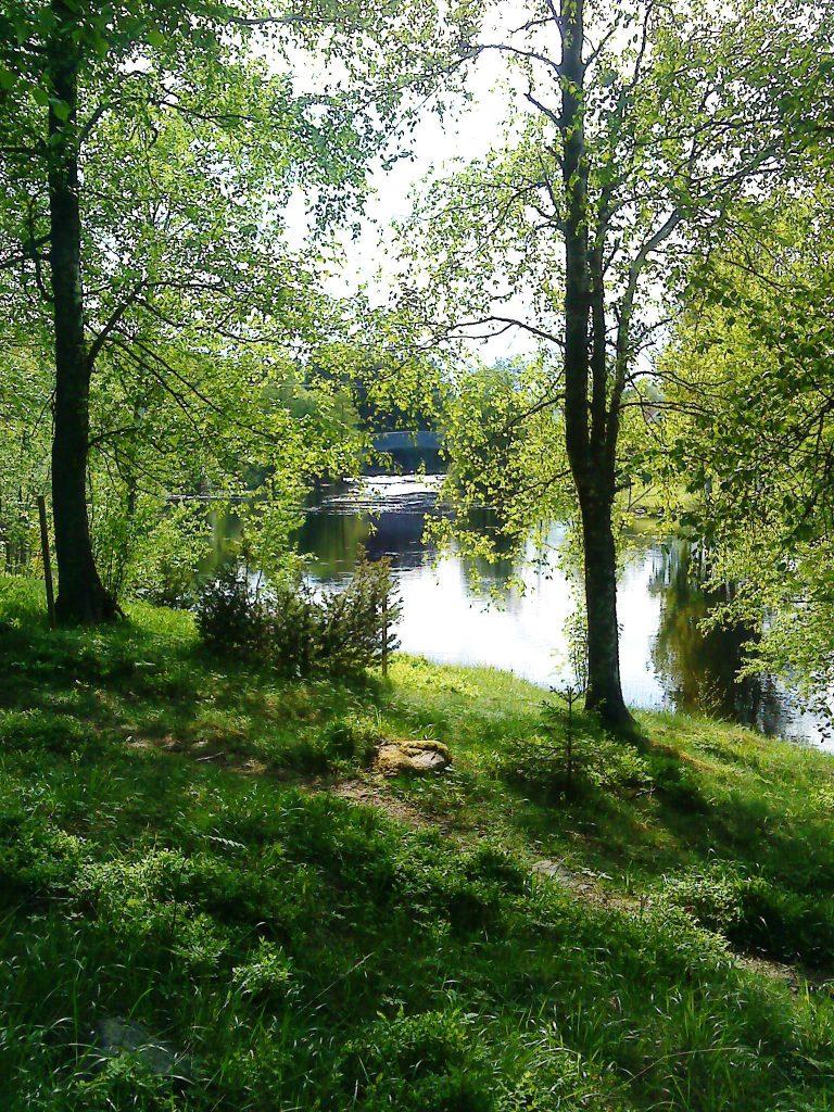 Gravfältet i förgrunden. En stig, träd och vatten.